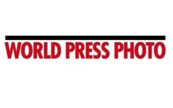 logo worldpress